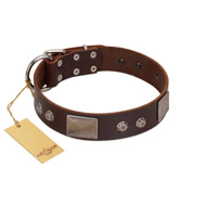 """Stone Stars"" Stylish Handmade FDT Artisan Brown Leather Newfoundland Collar"