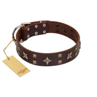 """Stars in Sands"" Modern FDT Artisan Brown Leather Newfoundland Collar with Studs and Stars"