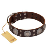 """Sun in Barchans"" Modern FDT Artisan Brown Leather Newfoundland Collar with Engraved Stars on Round Plates and Studs"