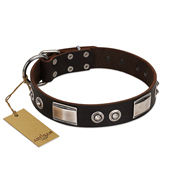 """Baller Status"" FDT Artisan Brown Leather Newfoundland Collar Adorned with a Set of Chrome Plated Studs and Plates"