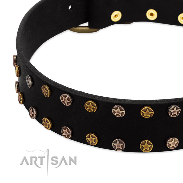 Trendy decorations on genuine leather collar for your pet