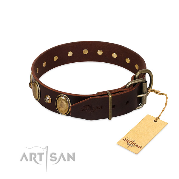 Rust-proof traditional buckle on leather collar for walking your four-legged friend