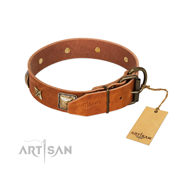 Natural genuine leather dog collar with strong fittings and embellishments