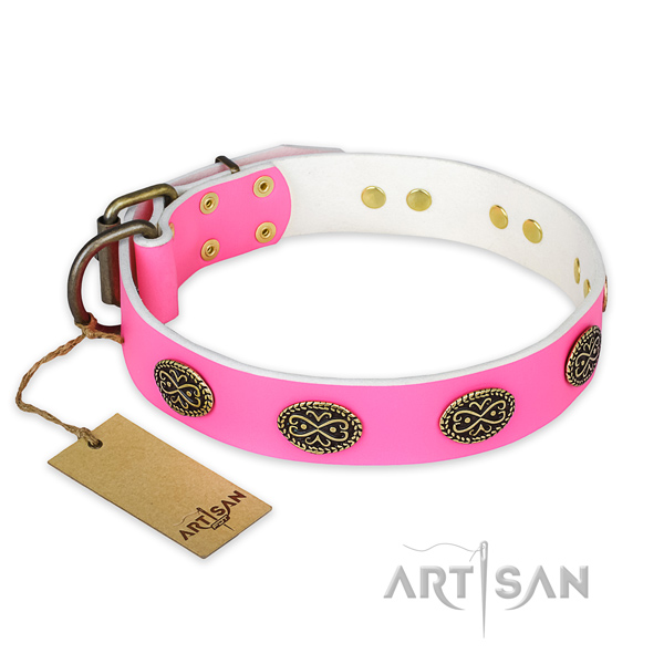 Incredible leather dog collar for walking
