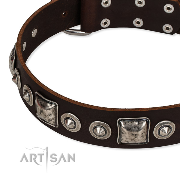 Full grain natural leather dog collar made of quality material with studs