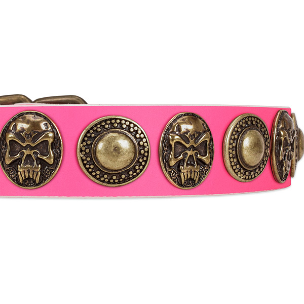 Corrosion resistant studs on full grain genuine leather dog collar for your pet