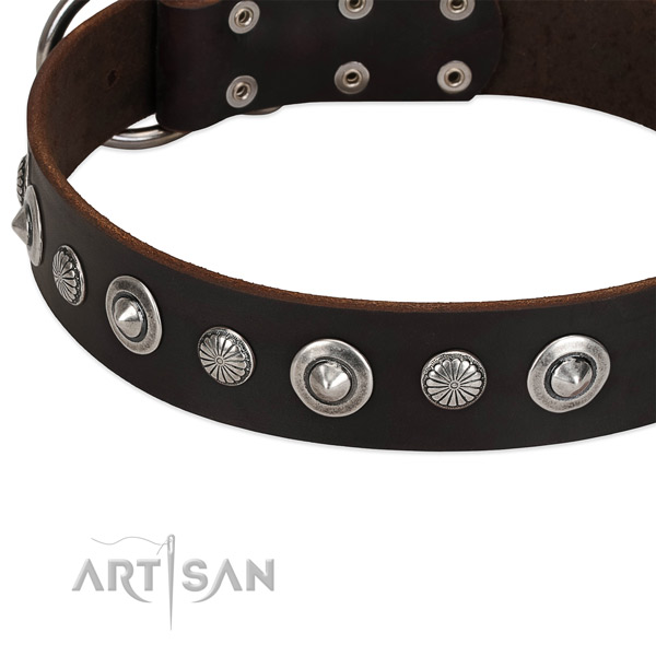 Exquisite studded dog collar of high quality genuine leather