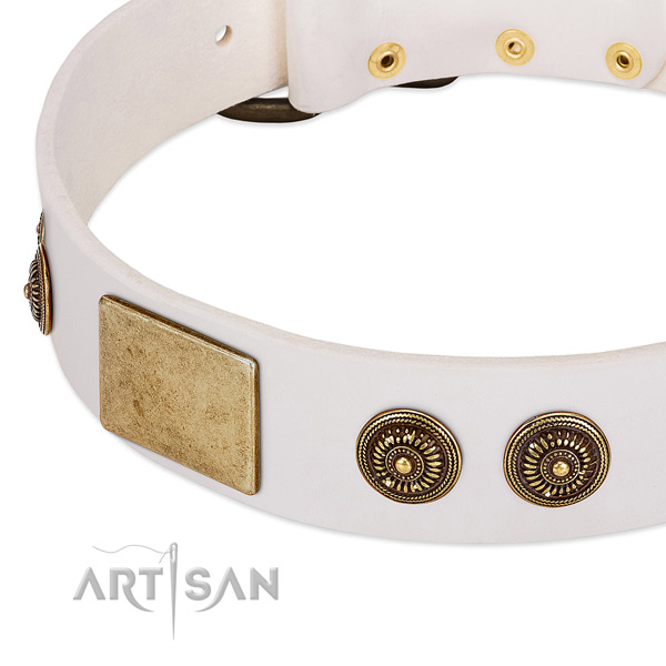Top notch dog collar handcrafted for your handsome canine