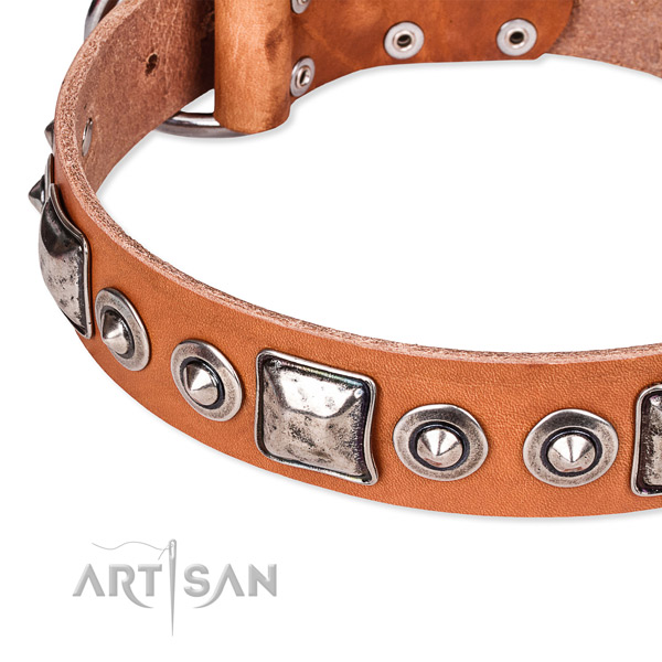 Durable full grain genuine leather dog collar handmade for your attractive dog