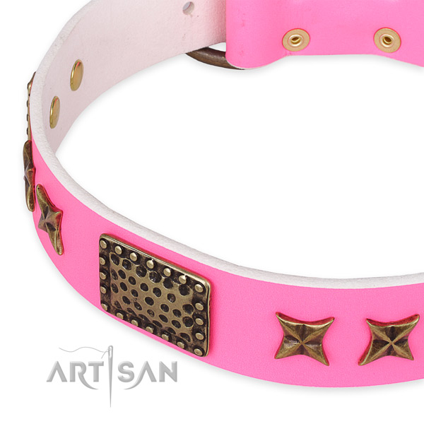 Full grain natural leather collar with reliable hardware for your beautiful doggie