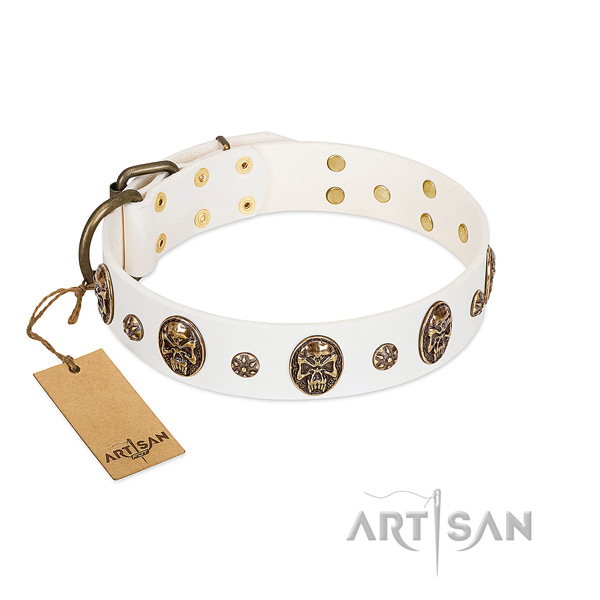 Decorated full grain leather collar for your canine