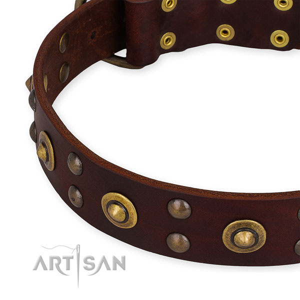 Full grain natural leather collar with corrosion proof hardware for your lovely dog