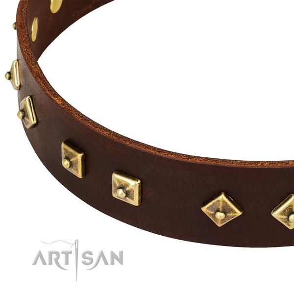 Easy wearing full grain leather collar for your beautiful pet