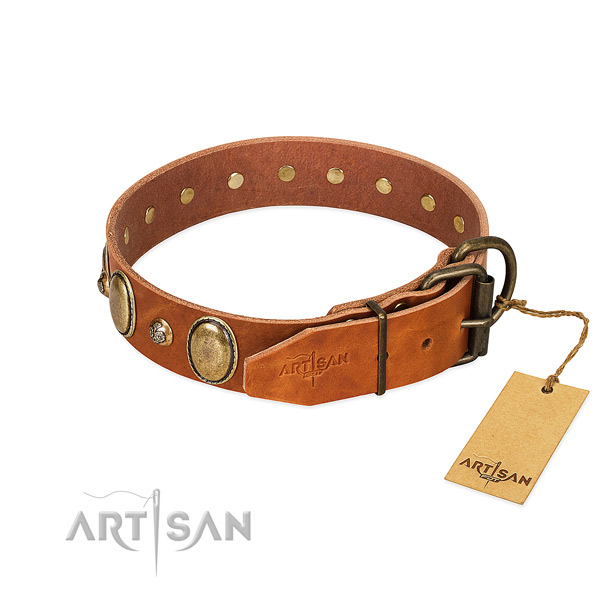 Comfy wearing genuine leather dog collar