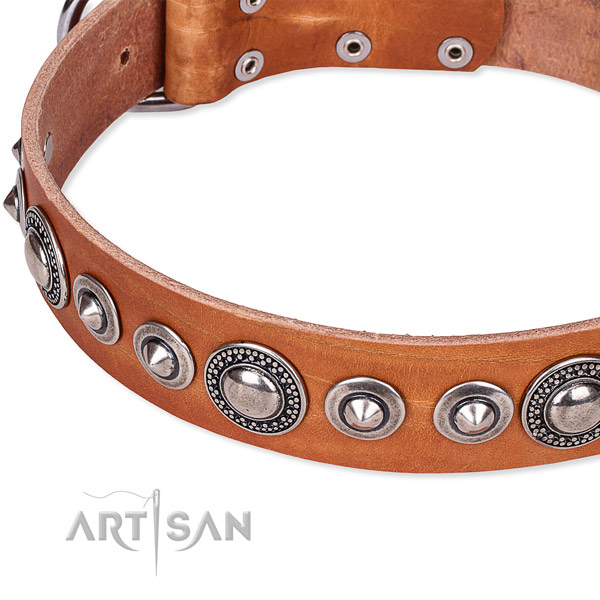 Walking decorated dog collar of reliable full grain genuine leather