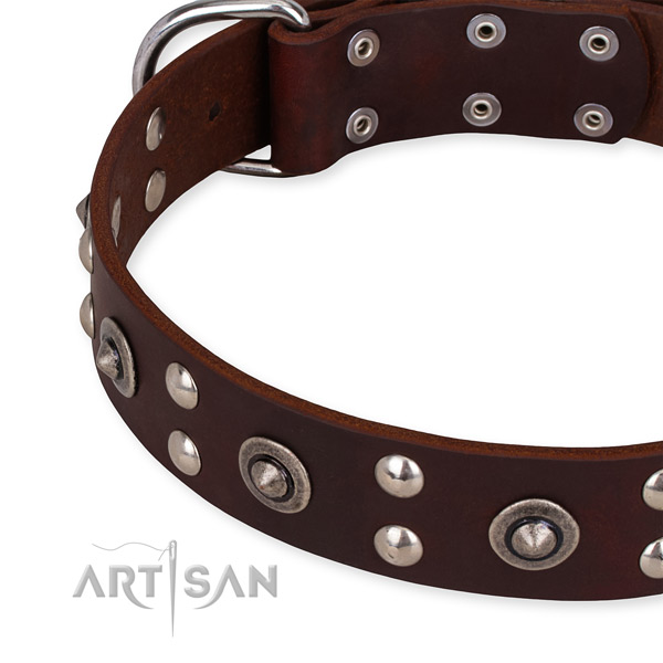 Full grain natural leather collar with durable traditional buckle for your stylish doggie