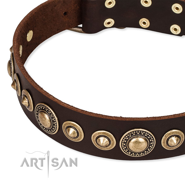 High quality leather dog collar handmade for your beautiful doggie