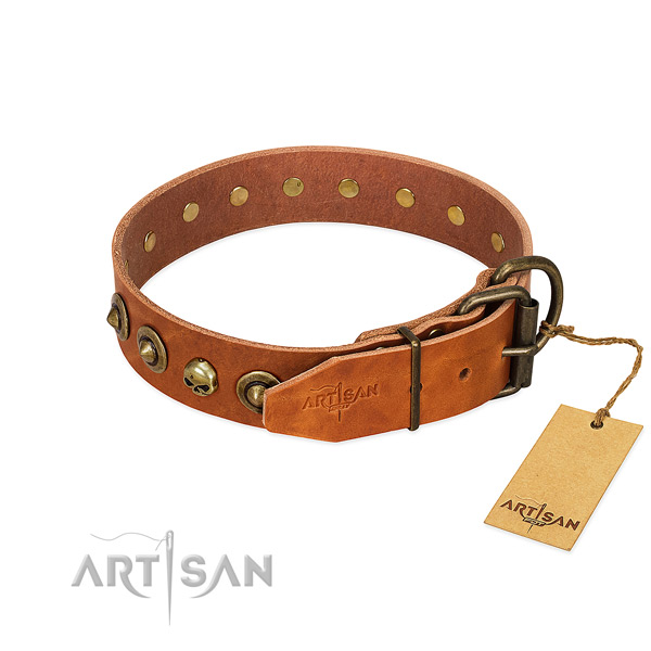 Leather collar with remarkable adornments for your dog