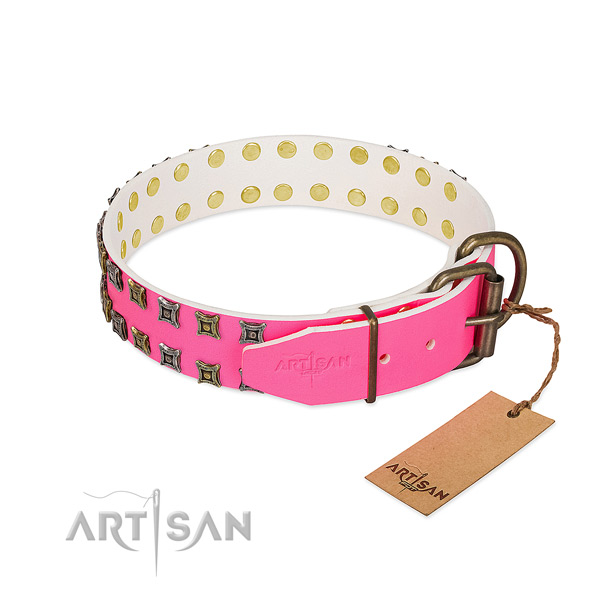 Natural leather collar with amazing embellishments for your dog