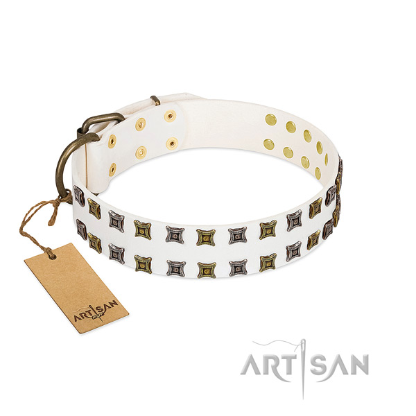 Leather collar with incredible embellishments for your doggie