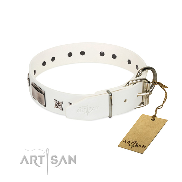 Impressive collar of leather for your attractive doggie