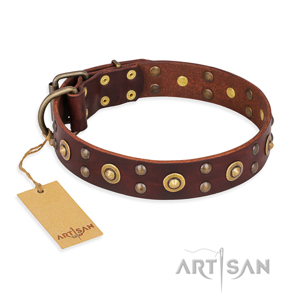Perfect fit full grain natural leather dog collar with corrosion resistant traditional buckle