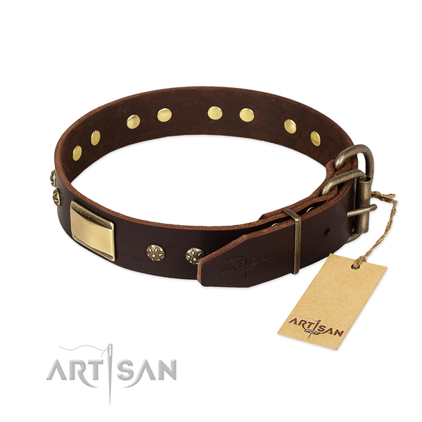 Embellished full grain leather collar for your doggie