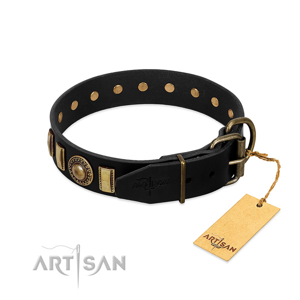 Quality leather dog collar with adornments