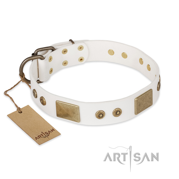 Designer full grain natural leather dog collar for walking