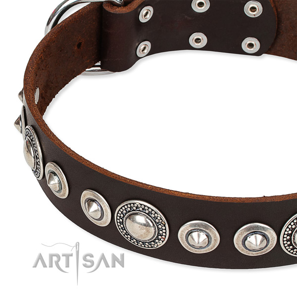 Daily use decorated dog collar of reliable full grain genuine leather