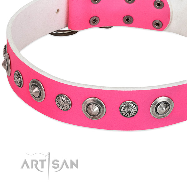 Full grain genuine leather collar with rust-proof D-ring for your attractive doggie