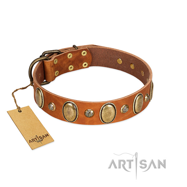 Natural leather dog collar of high quality material with exceptional decorations