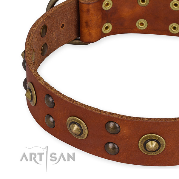 Full grain leather collar with reliable buckle for your lovely dog