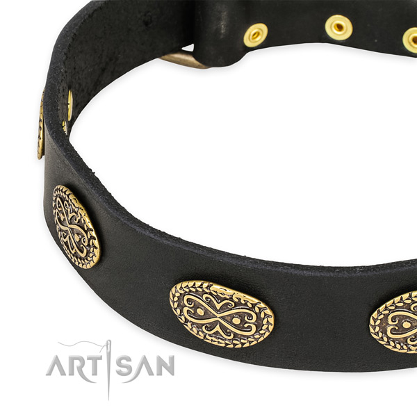 Inimitable leather collar for your attractive canine