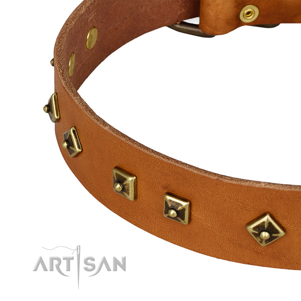Fine quality natural leather collar for your handsome doggie