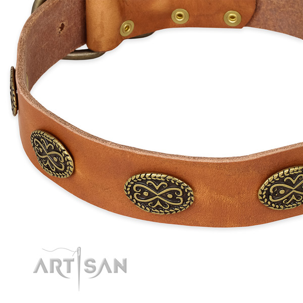 Significant full grain leather collar for your attractive four-legged friend