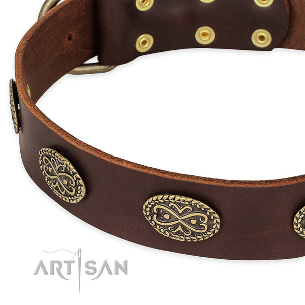 Stylish natural genuine leather collar for your beautiful four-legged friend