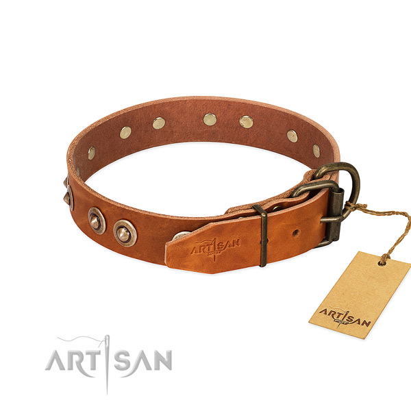 Rust-proof decorations on genuine leather dog collar for your pet