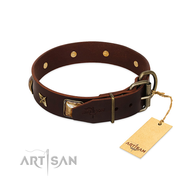 Full grain leather dog collar with corrosion proof hardware and embellishments