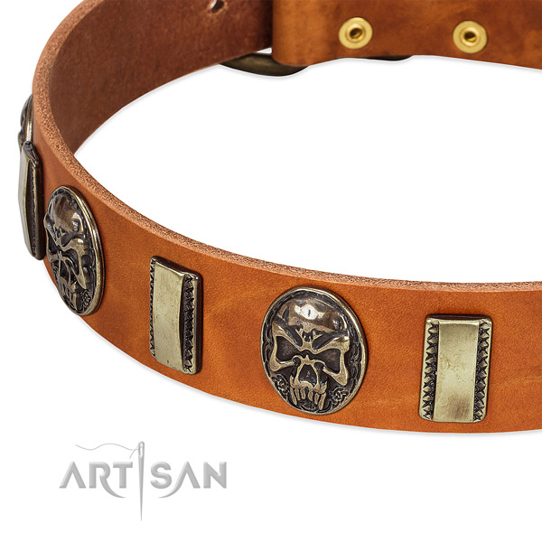 Strong decorations on full grain leather dog collar for your pet
