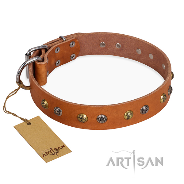 Daily use inimitable dog collar with strong fittings