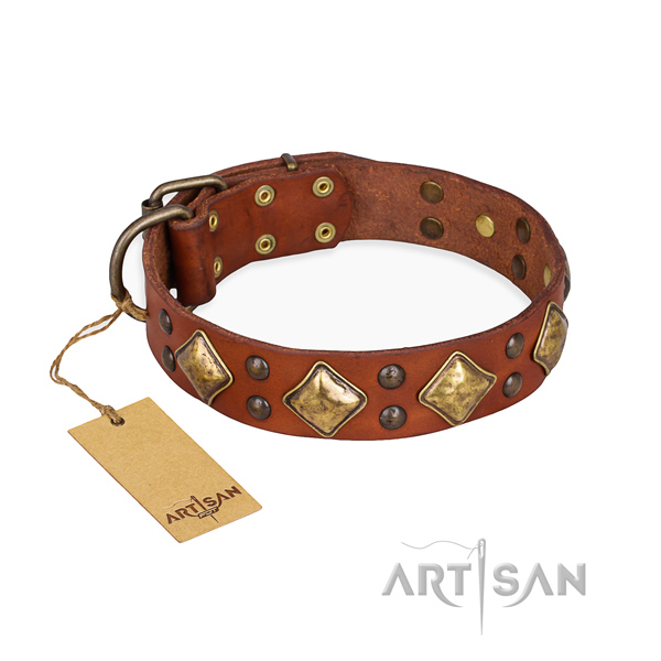 Walking stylish dog collar with corrosion proof fittings