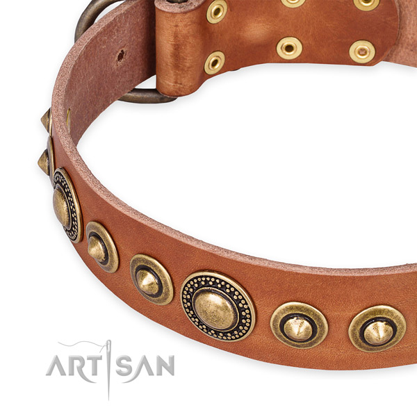 Top notch full grain leather dog collar crafted for your impressive pet