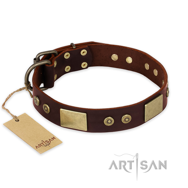 Exquisite full grain leather dog collar for daily use
