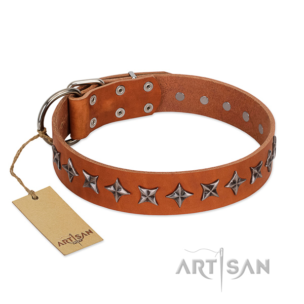 Walking dog collar of durable genuine leather with decorations