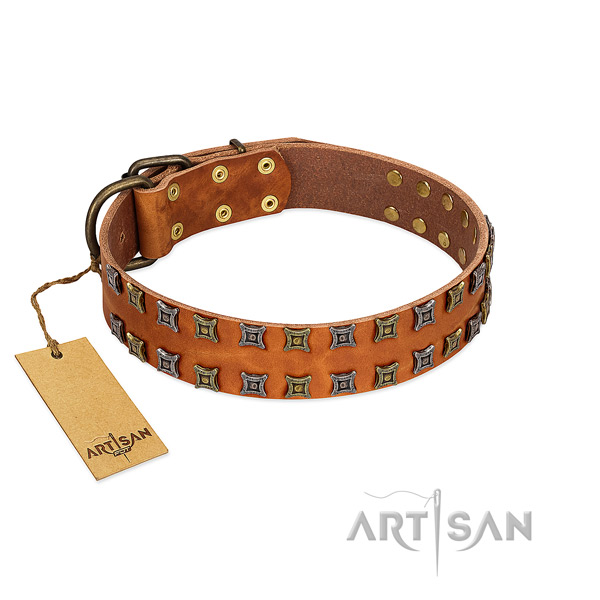 Strong natural leather dog collar with adornments for your pet