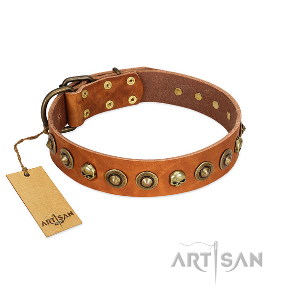 Full grain leather collar with amazing embellishments for your canine