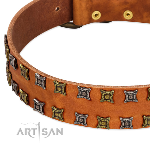 Top notch full grain natural leather dog collar for your impressive pet