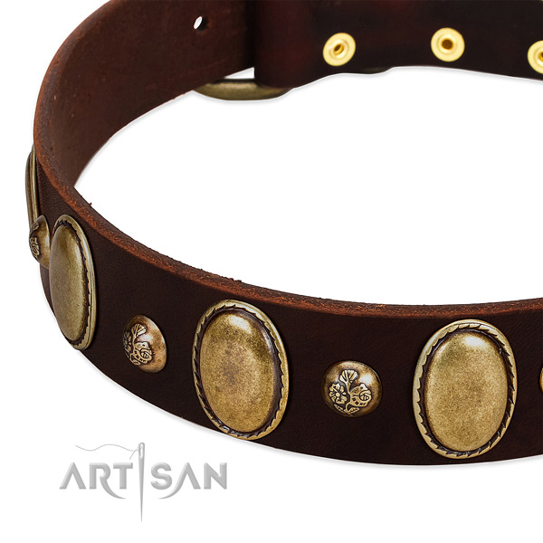 Leather dog collar with amazing decorations
