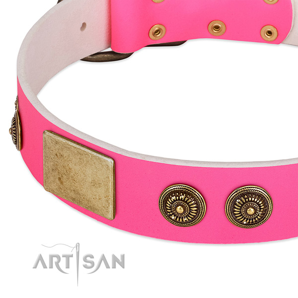 Embellished dog collar created for your lovely dog